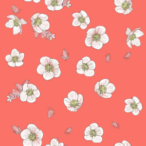 2019_floralcoral2